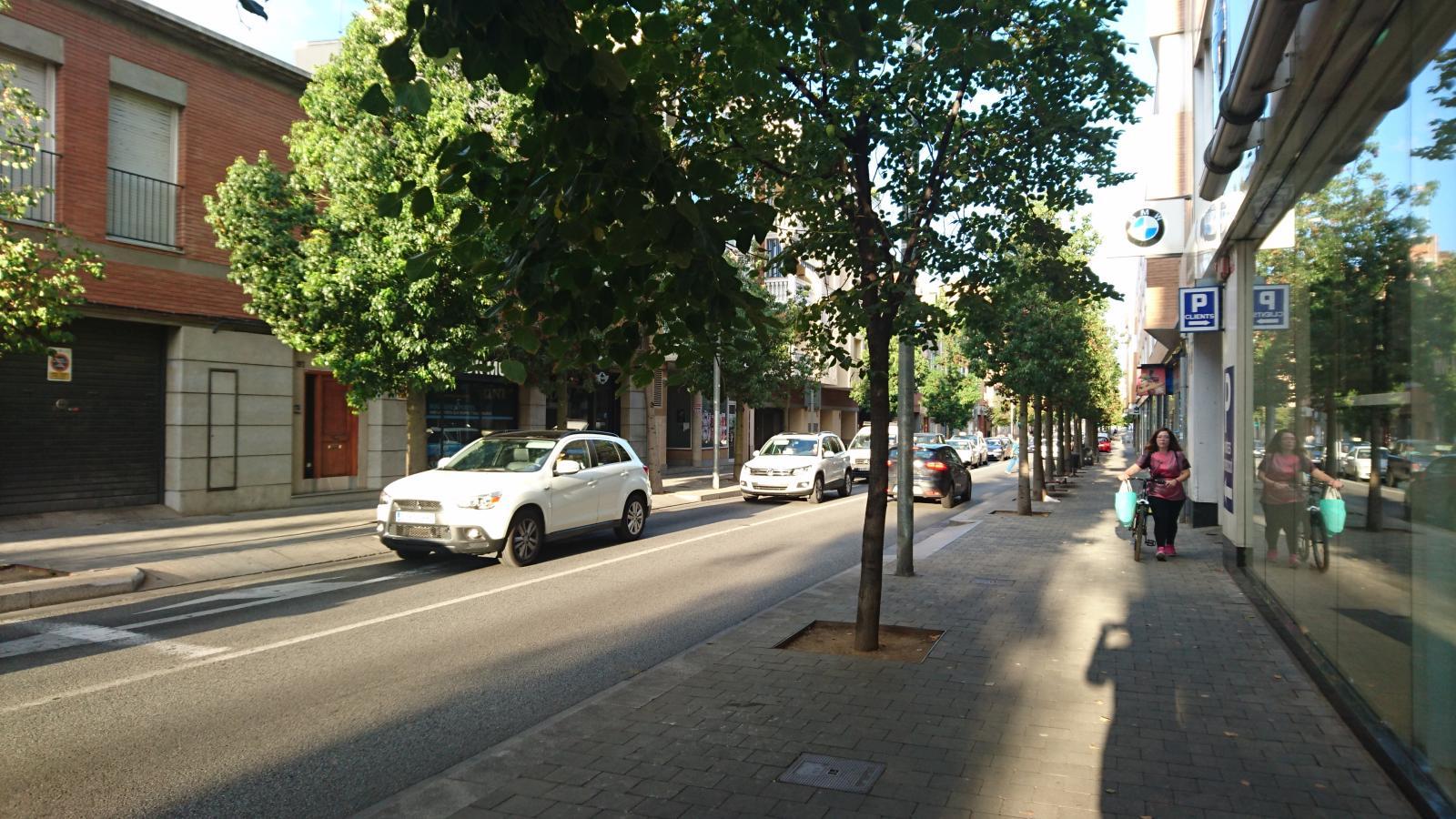 A partir de dilluns se substitueixen els arbres de la carretera Montcada