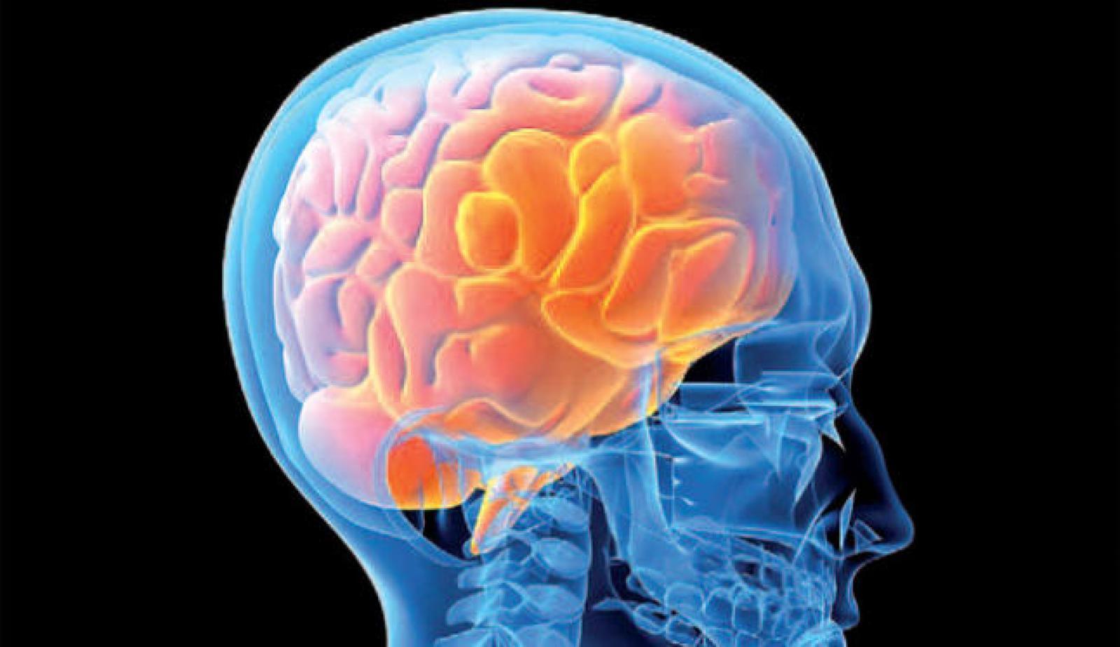 El nostre cervell desenvolupa addicció a la mentida