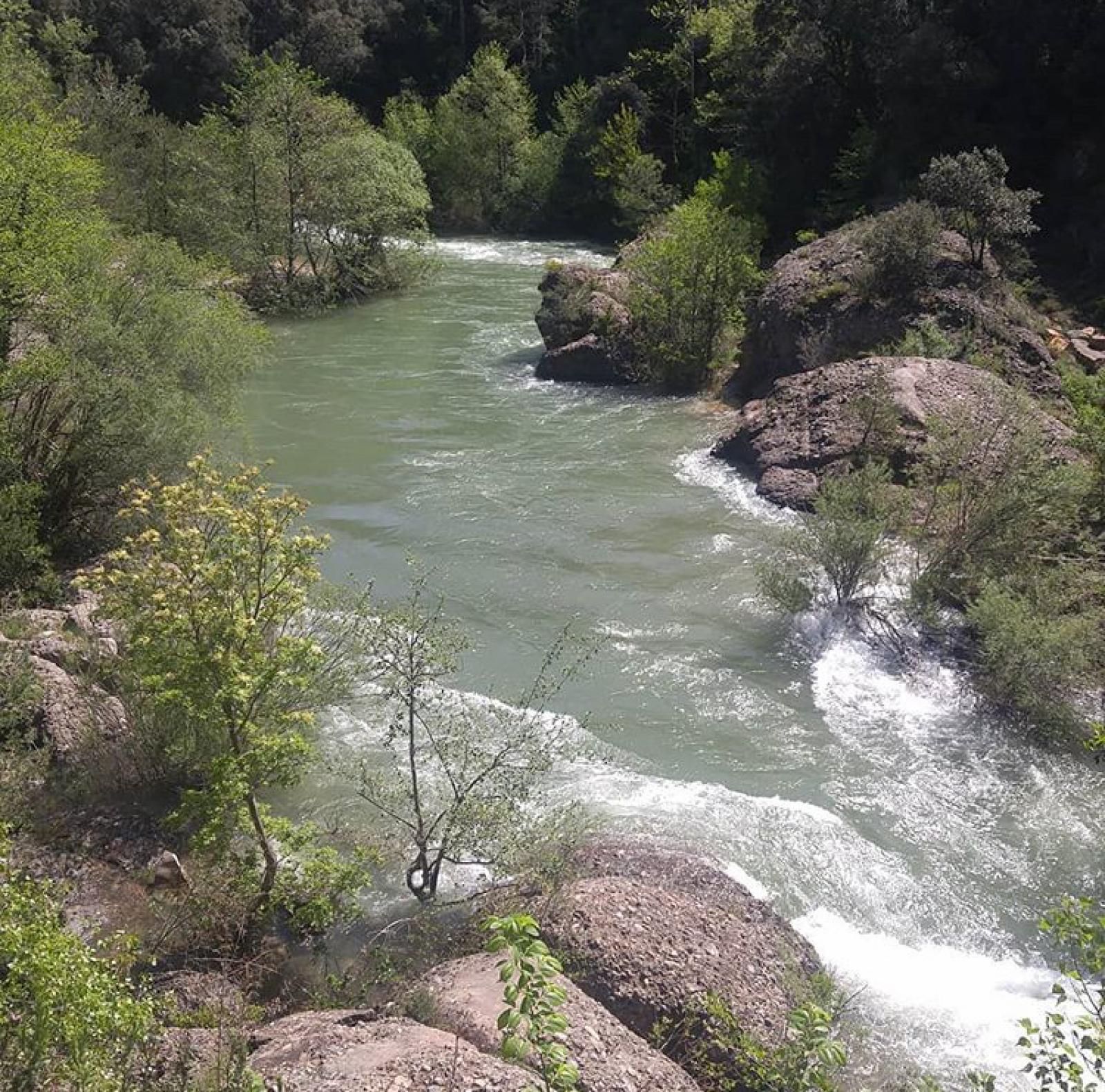 El riu Llobregat des del Pont del Pedret