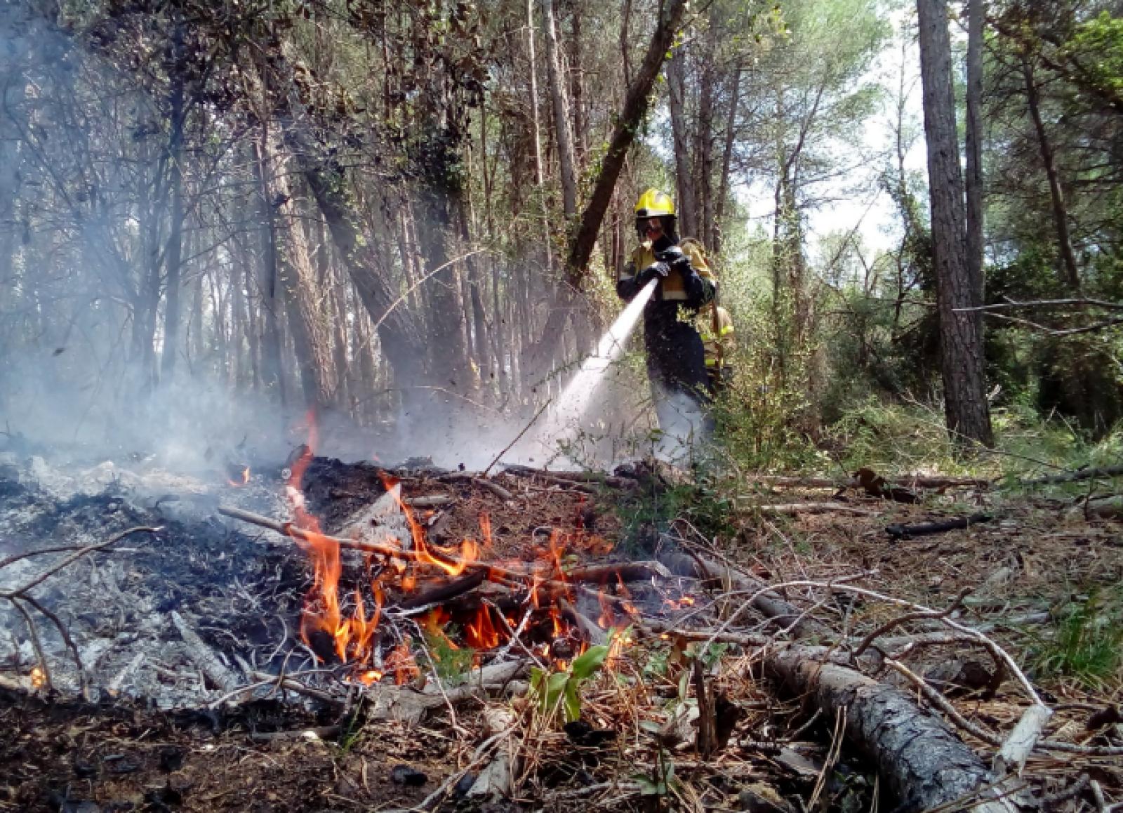 Incendi forestal a Torrebonica