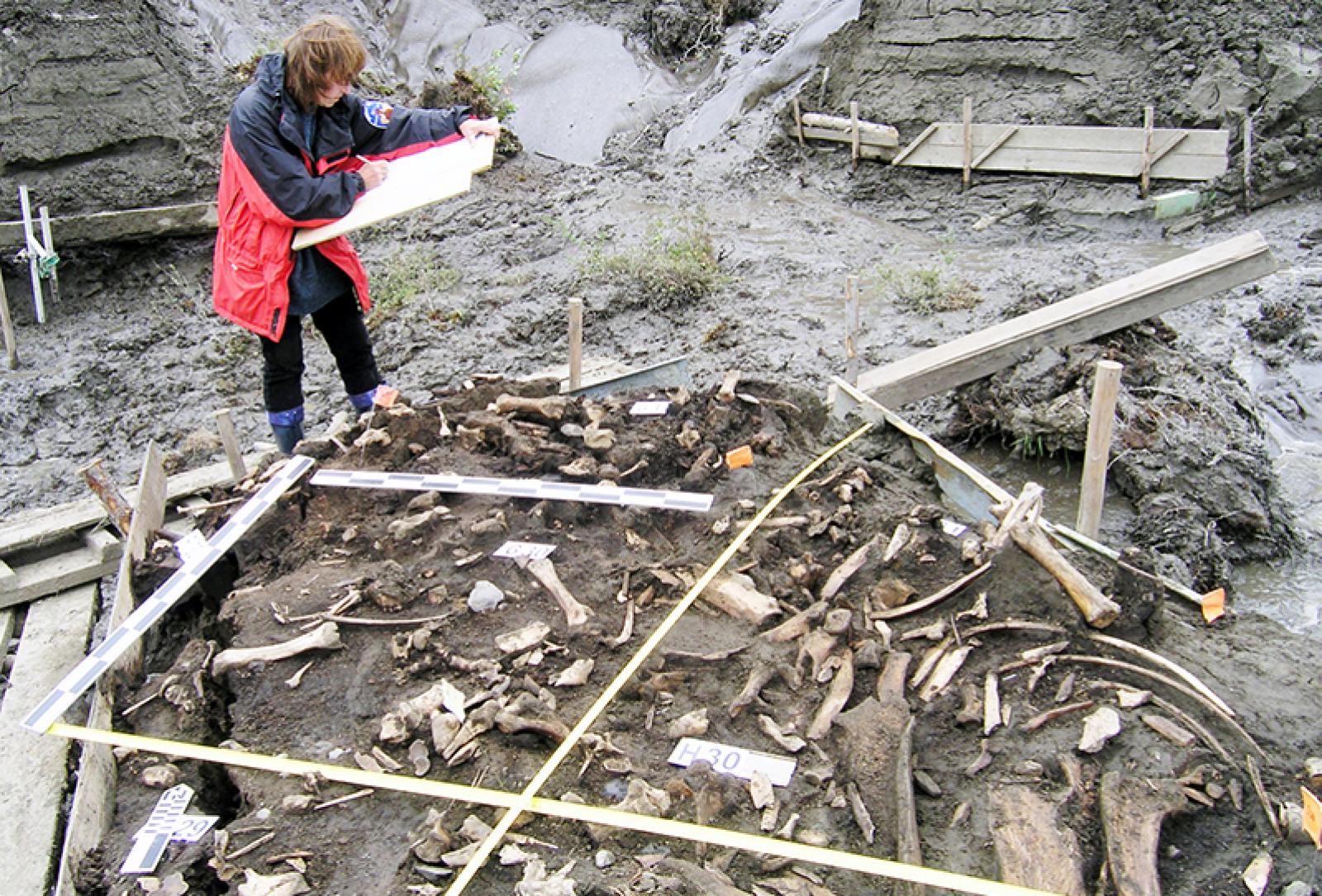 El jaciment del riu Yana, a Sibèria, on s'han trobat les dues dents de llet