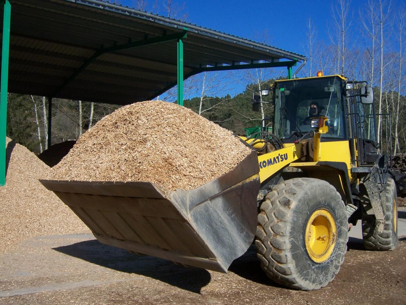 Tractament de biomassa forestal per a la generació d'energia tèrmica a Barcelona