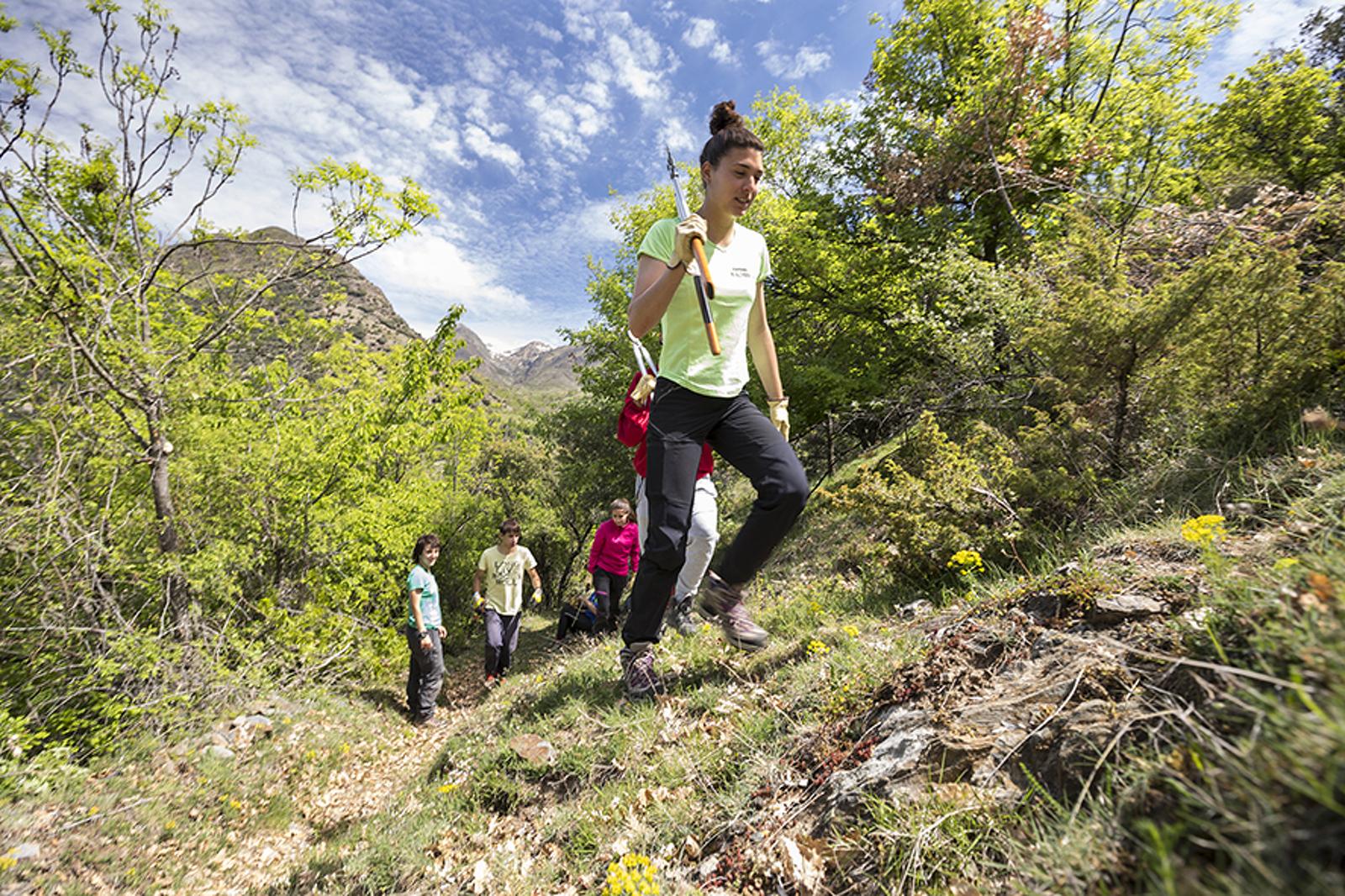Fotografia del Projecte Boscos de Muntanya 2019