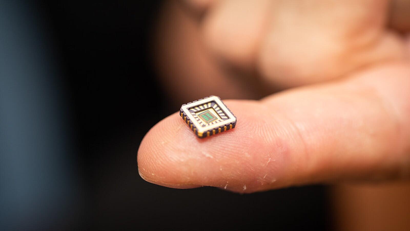 Un dels circuits neuronals artificials desenvolupats a Anglaterra