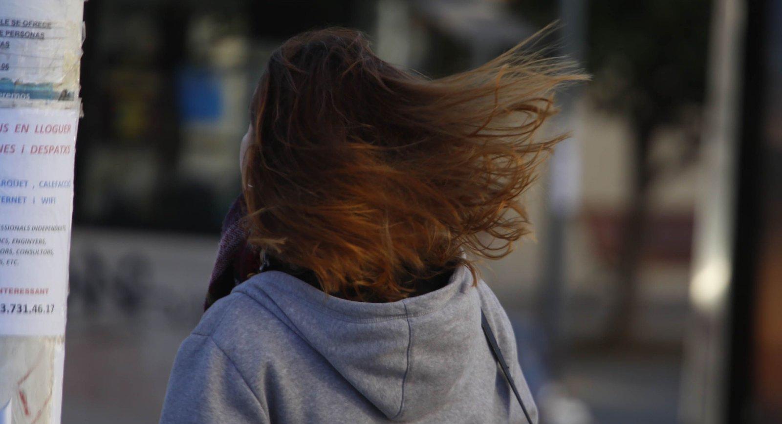 L'impacte del vent a Terrassa 24-1-2019