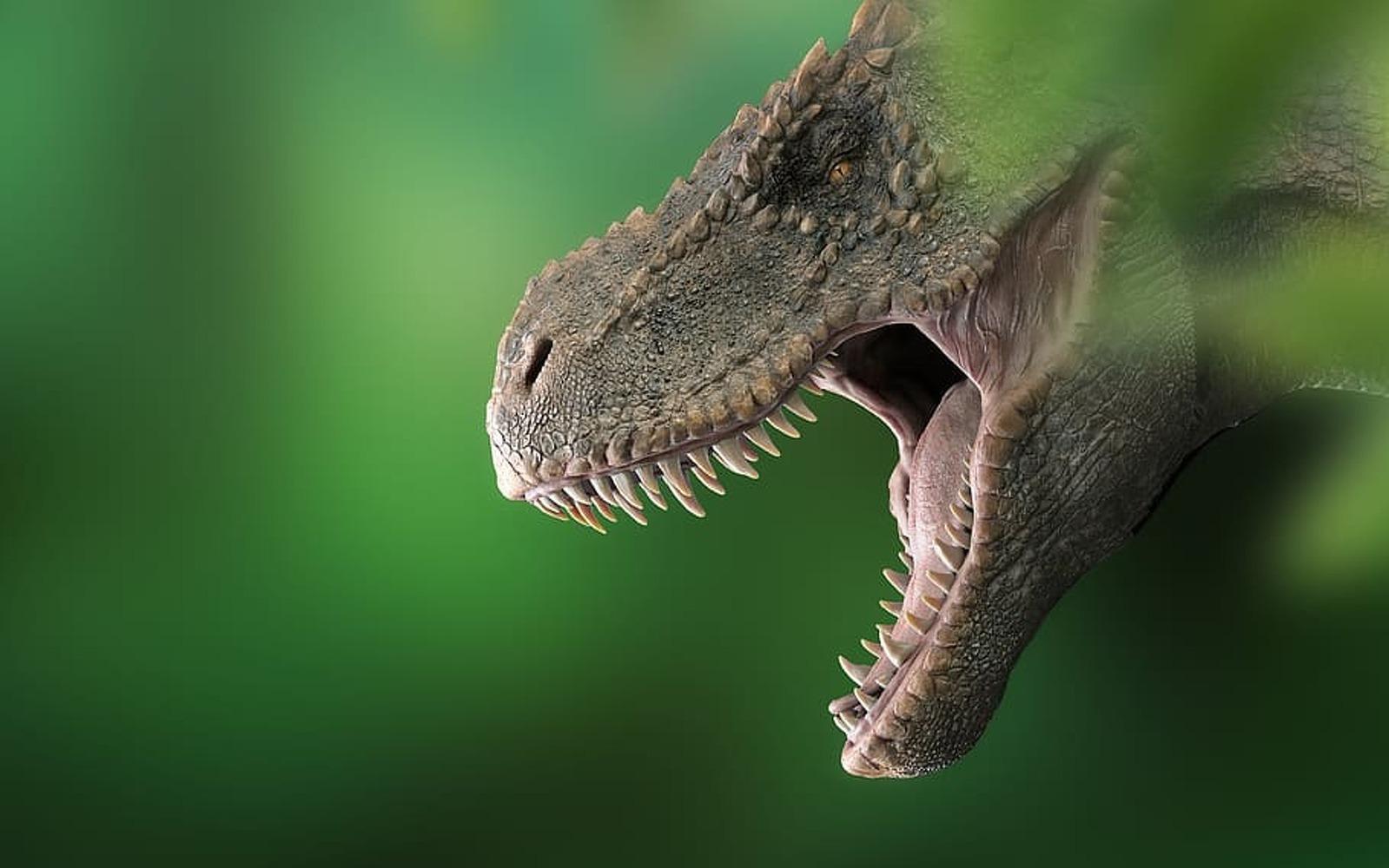 Reproducció artística d'un tiranosaure rex