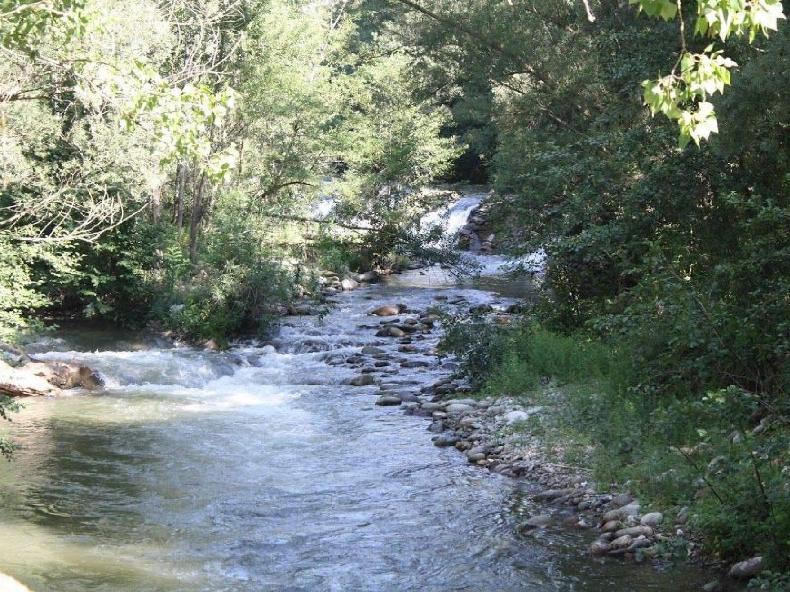 El riu Freser
