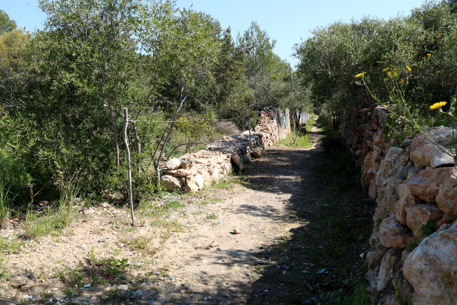 Una part del camí ramader a Vilanova i la Geltrú