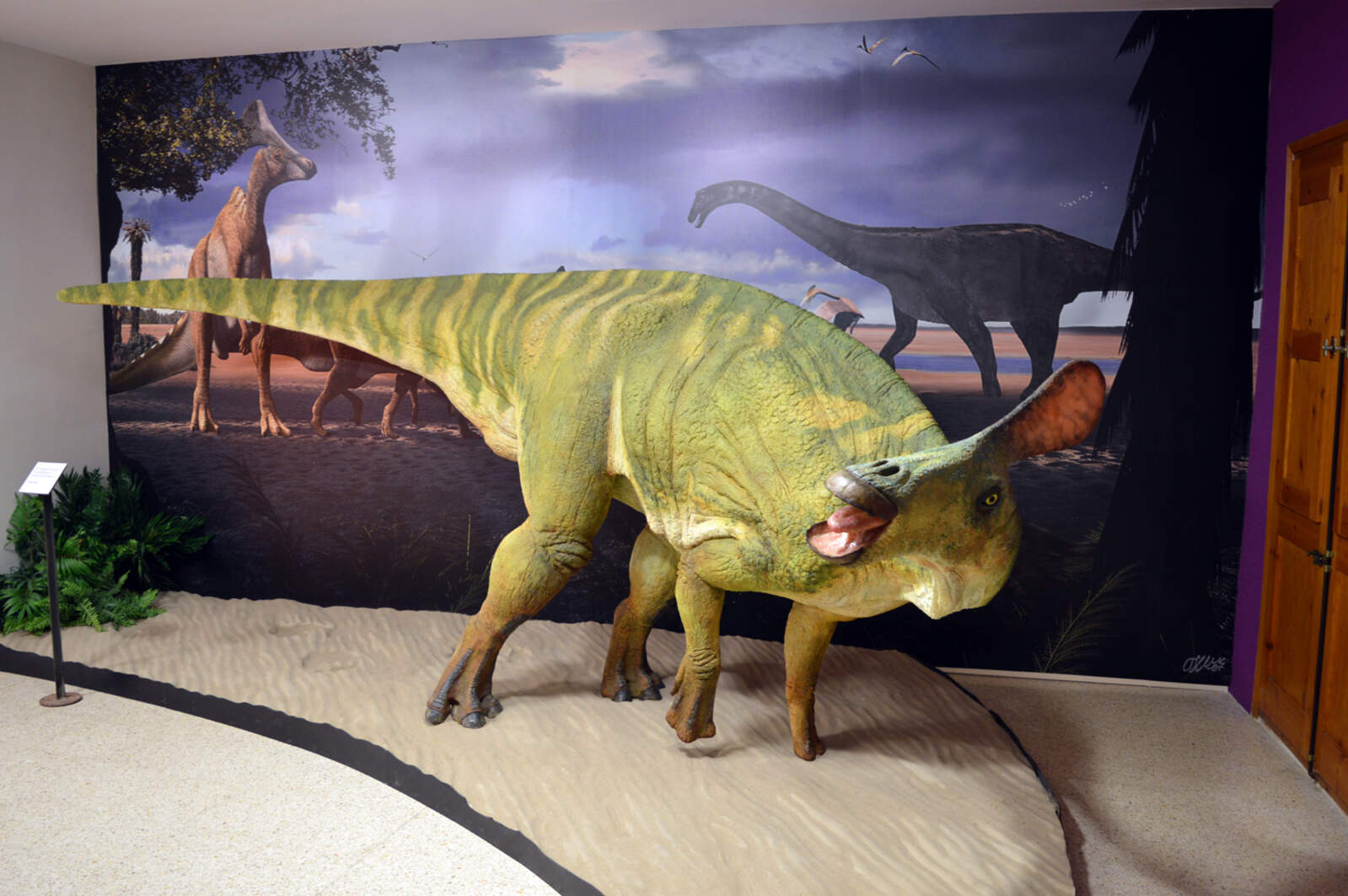Recreació escultòrica de l'aspecte en vida de Pararhabdodon isonensis al Museu de la Conca Dellà