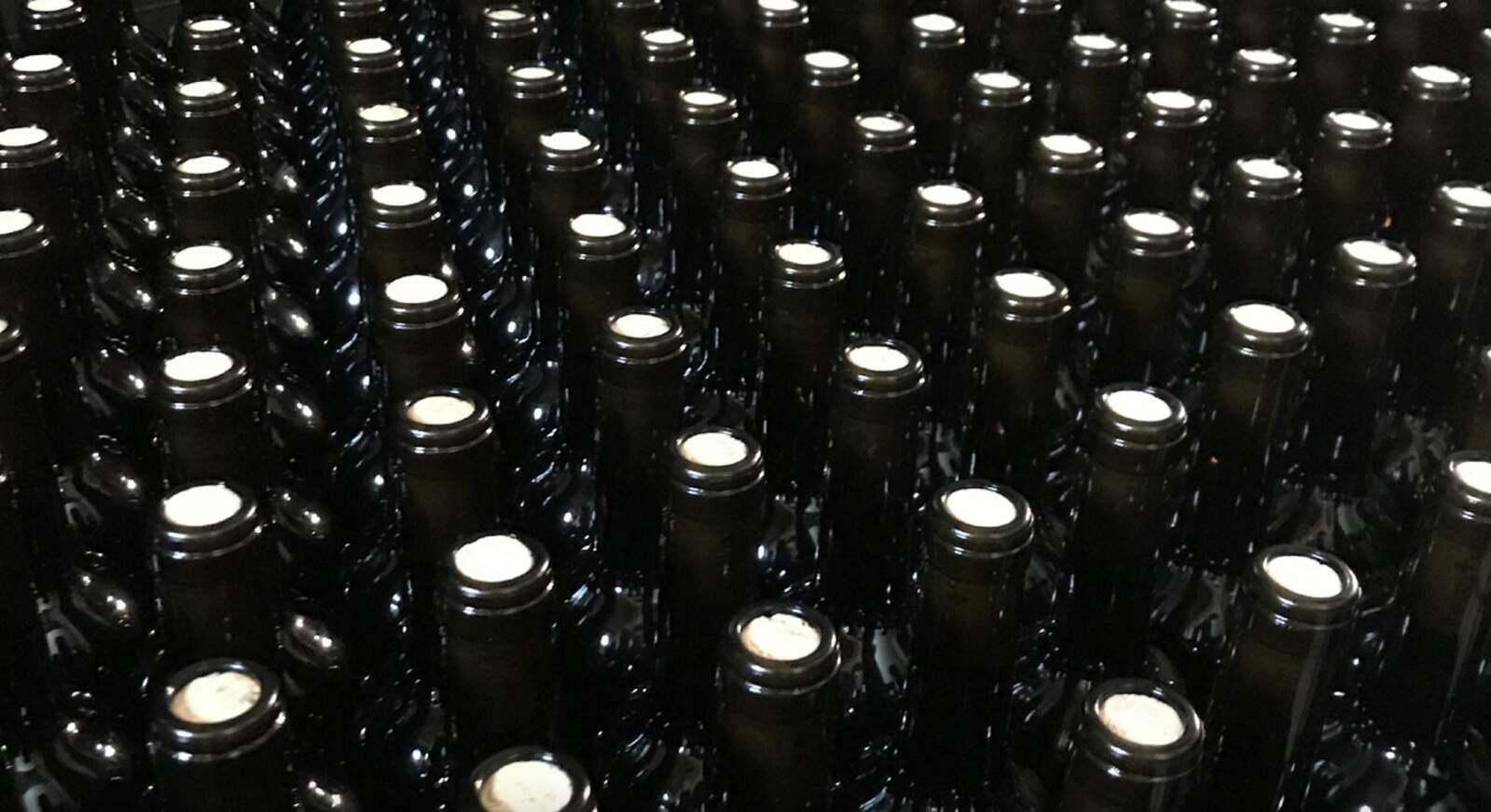 Ampolles de vi reutilitzades a través del programa ReWine
