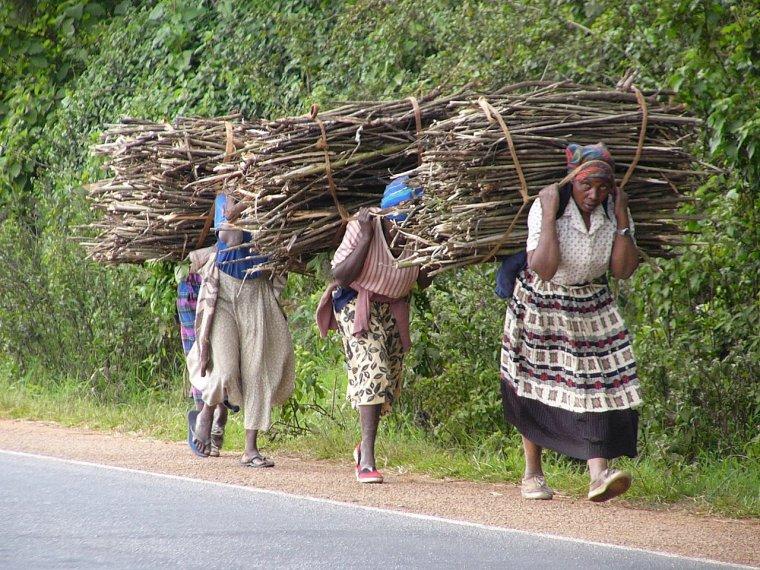 Dones africanes carregant llenya    M-Rwimo