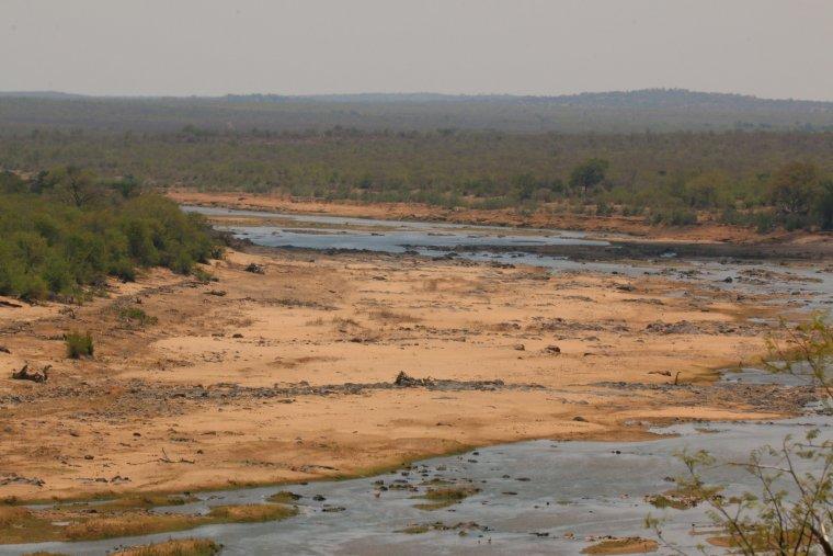 El riu Olifants del Parc Nacional Kruger (Sud-àfrica) durant un episodi de sequera  | Fabien Rouire (CC)