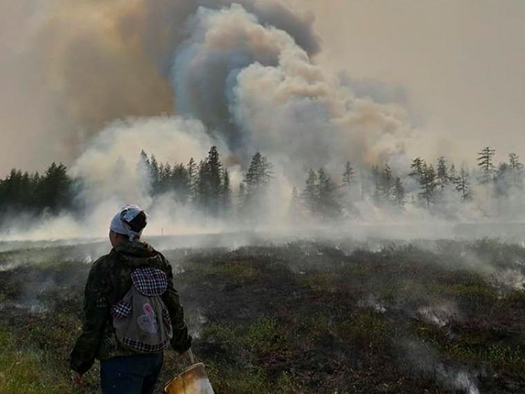 Incendi a la tundra siberiana  | Siberian Times