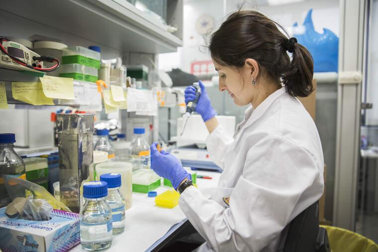 Investigadora de l'IRB  | Institut de Recerca Biomèdica