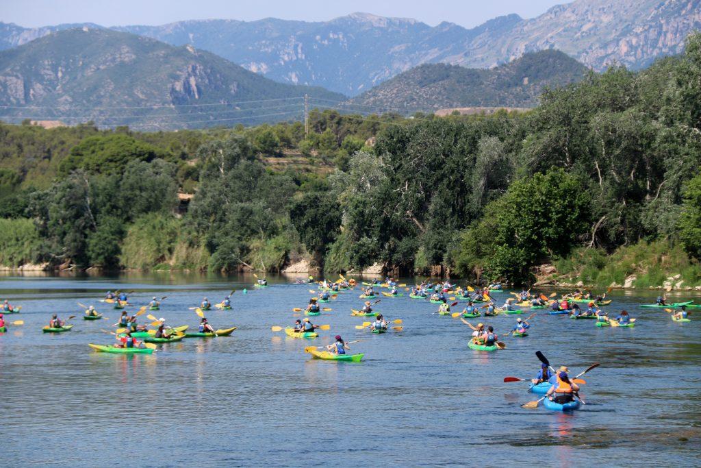 Els participants de la 20a Piraguada en Defensa de l'Ebre recorrent el riu a la  sortida a Xerta | ACN