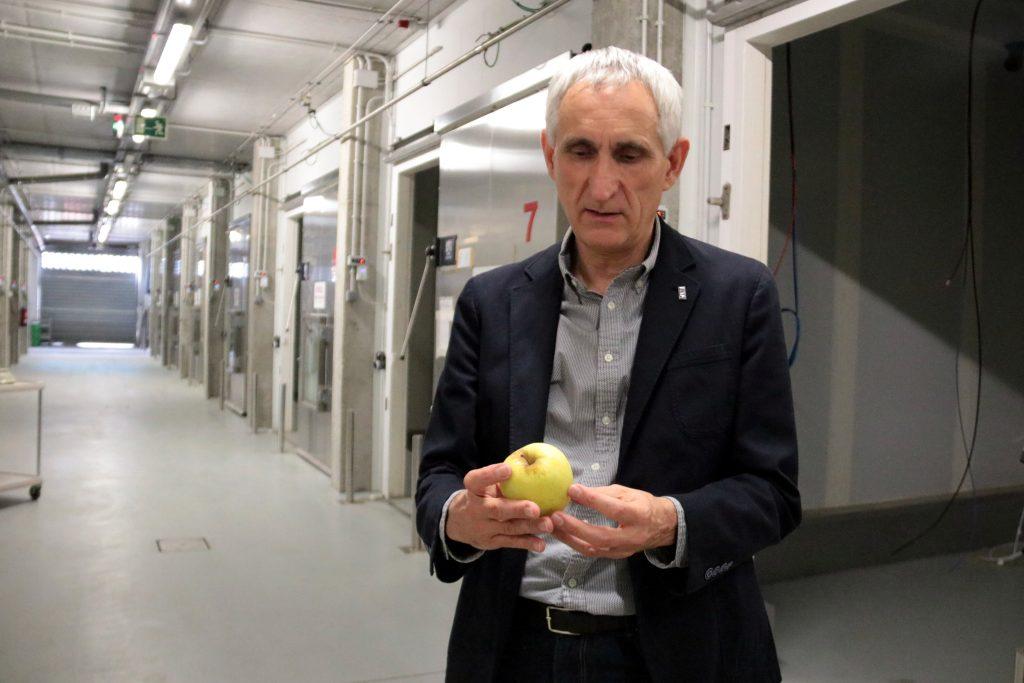 Josep Usall amb un préssec a la mà   ACN