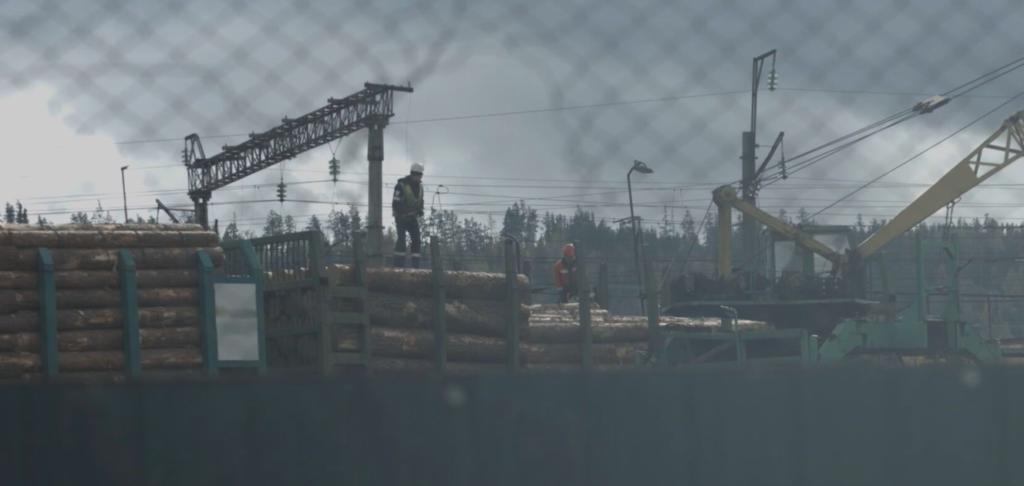 Tala il·legal a Rússia | Earthsight