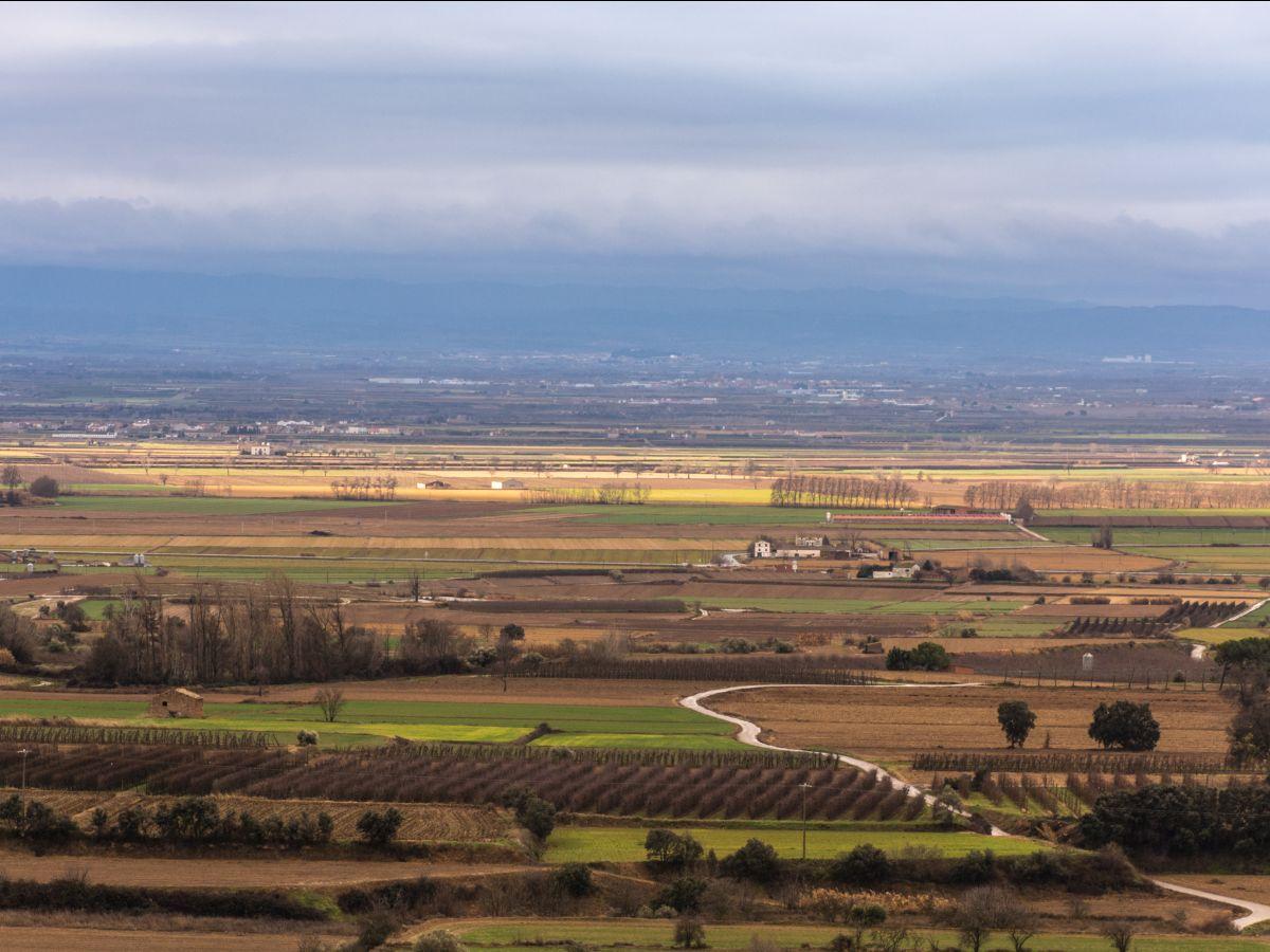 El Pla d'Urgell | Ramon Oromí