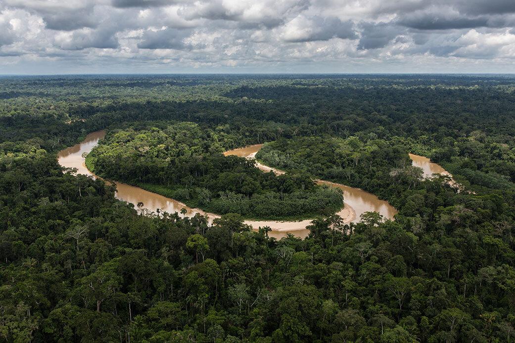 La selva amazònica | Cedida