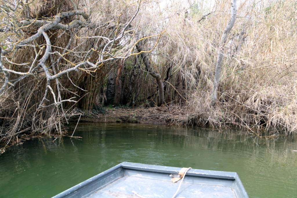 Una barca arribant a un dels marges dels canals de la Reserva de Sebes on hi ha instal·lada una càmera trampa de seguiment de llúdrigues   ACN