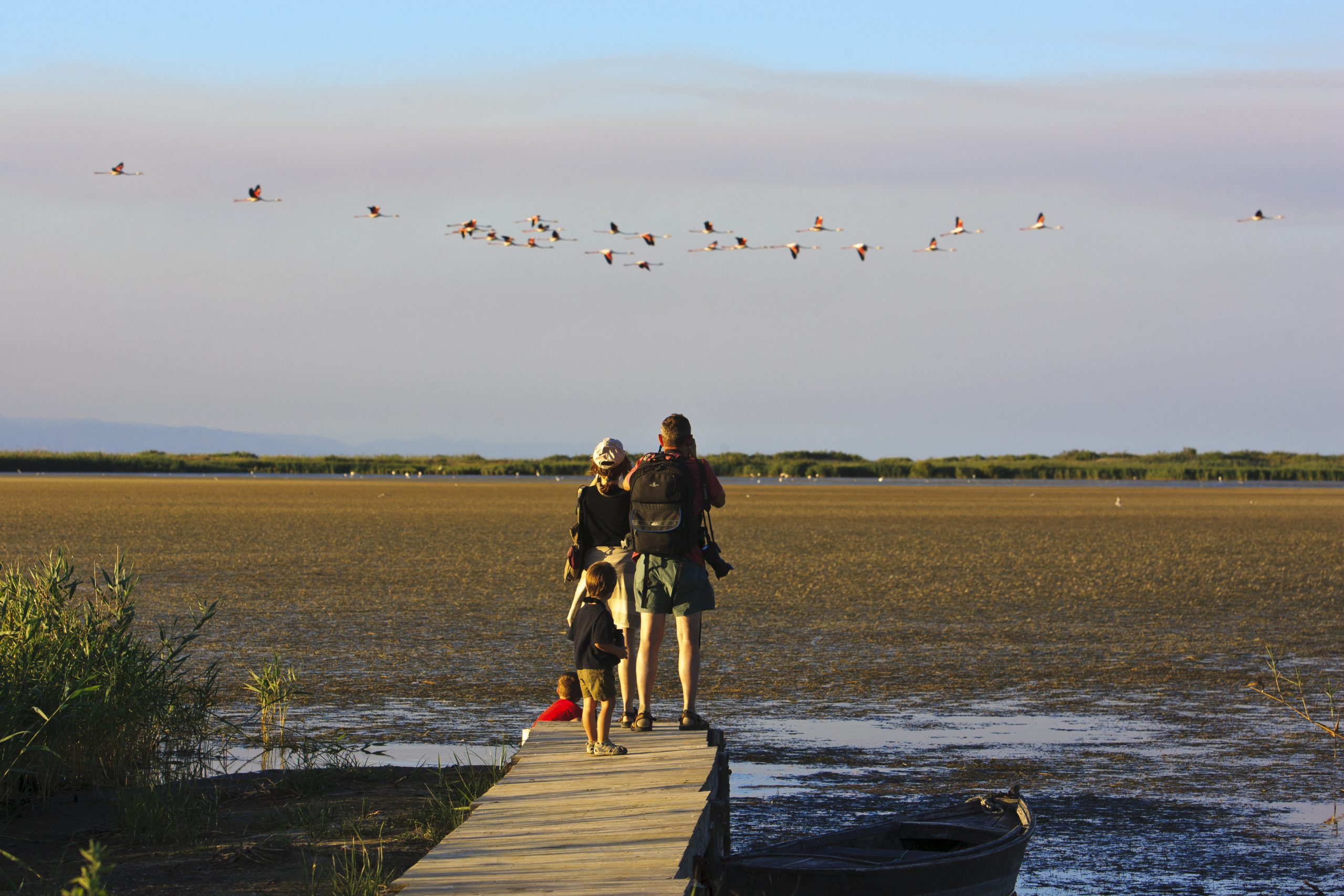 Observació d'aus al Parc Natural del Delta de l'Ebre